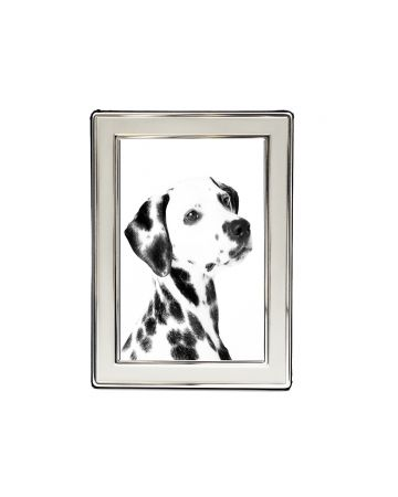 Satin Silver Photo Frame - 4x6""
