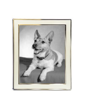 Satin Plain Photo Frame - 8x10