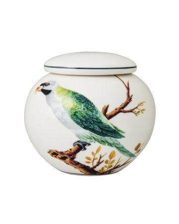 V&A Green Parrot Small Ginger Jar