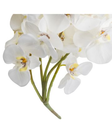 Large Orchid Spray