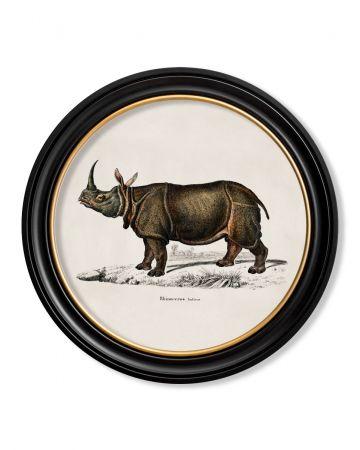 Round Rhino Print - 70cm