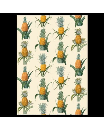 25 Pack Gift Wrap - Pineapple
