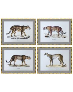 Cats Set of 4 Prints in Bamboo