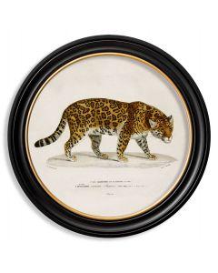 C.1836 Large Round Jaguar