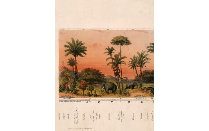 C.1852 View of Nature in all Climates - From the Equator to the Arctic Circle - 2 Meters