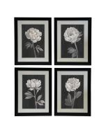 Black and White Flowers Set of 4 Prints